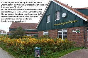 Teil 9_Spiekerooger Utkieker_Ingrid Schmitz_Museumspferdebahn